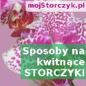 MóStorczyk.pl - Blog o storczykach.